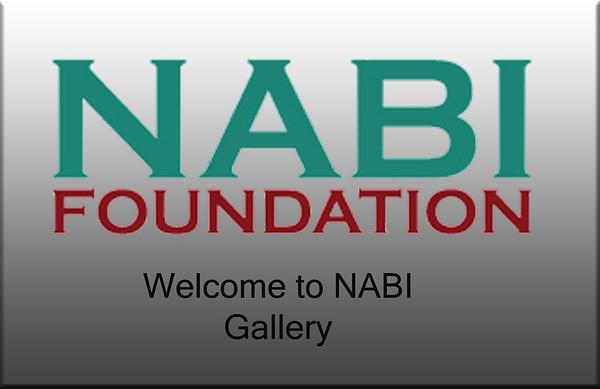 2011 NABI Check-In & Career Fair